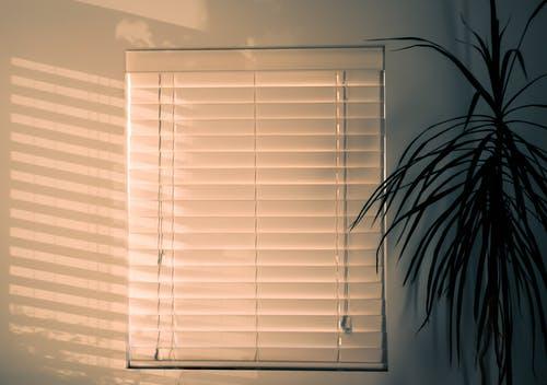 install blinds
